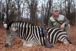 Zebra taken with B&M rifle and CEB projectiles