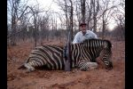 Zebra taken with B&M rifle & 9.3mm CEB projectiles 2011