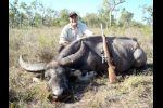 Water buffalo taken with 500 MDM Ultra 2009 3