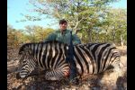 Zebra taken with B&M rifle and CEB projectiles 2012